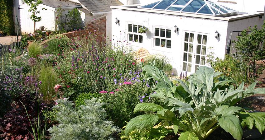 Terrace garden euphorbia design for Open terrace garden designs