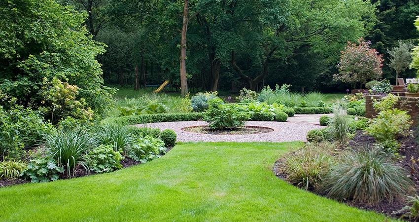 Woodland garden euphorbia design for Woodland landscape design